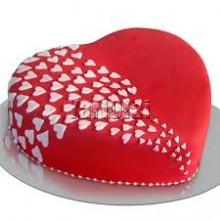 Spcial Cake 1