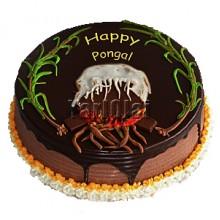 Pongal Cake 02