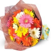 Bouquet of 20 Gerberas