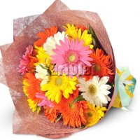 Bouquet of 20 Gerberas