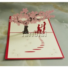 Will You Marry Me 3D Card
