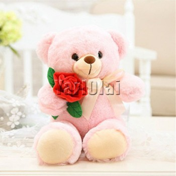 Teddy  With Single Rose