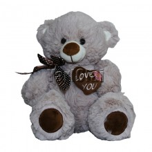 Brown Colour Teddy Bear