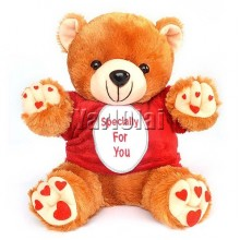 Specially For You Teddy Bear 13""