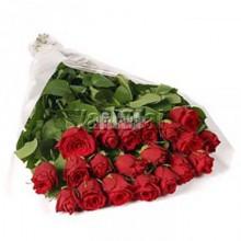 KISSES OF LOVE ROSES