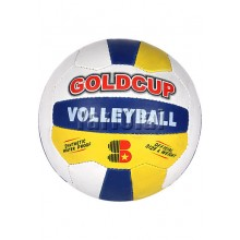 Gold Cup Volly Ball